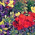 Red Geranium With Yellow And Purple Flowers - Vertical by Lyn Voytershark