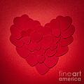 Red Heart by Elena Elisseeva
