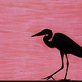 Pink - Heron - Sunset by D Hackett