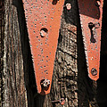 Red Hinges On Weathered Wood by Rebecca Sherman