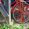 Red Hippie Bike Front Wheel by Coertje Feil