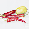 Red Hot Chili Peppers And Lemone by Irina Gromovaja