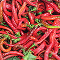 Red Hot Chilli Peppers by John Halliday