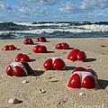 Red Hot Peppers by Jaroslaw Blaminsky