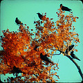 Red Leaves Among The Ravens by Gothicrow Images