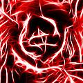 Red Lettuce by Matthew Naiden