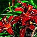Red Lilies Expressive Brushstrokes by Barbara Griffin