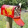 Red Mailbox by Jeelan Clark