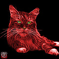 Red Maine Coon Cat - 3926 - Bb by James Ahn