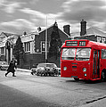 Red Midland Bus And Sheep - 1960's    Ref-126 by William R Hart