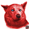 Red Mila - Siberian Husky - 2103 - Wb  by James Ahn