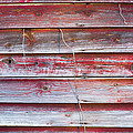 Red Mold Siding by Ben and Rachel Melton