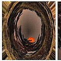 Red Moon Rising - Abstract - Triptych by Barbara Griffin