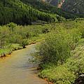 Red Mountain Creek - Colorado  by Mike McGlothlen