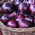 Red Onion by Vishwanath Bhat