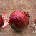 Red Onions On Barnboard by Barbara McMahon