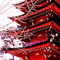 Red Pagoda by Robert  Rodvik