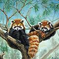 Red Pandas by Beverly Fuqua