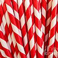 Red Paper Straws by Edward Fielding