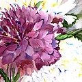 Red Peony by Neela Pushparaj