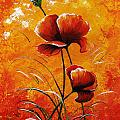 Red Poppies 023 by Voros Edit