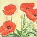 Red Poppies 3 Colorful Watercolor Poppy Floral Original Art Flowers Garden Artist K. Joann Russell by K Joann Russell