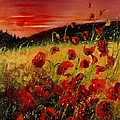 Red Poppies And Sunset by Pol Ledent