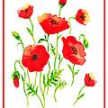 Red Poppies Botanical Design by Irina Sztukowski