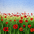Red Poppies Green Field And A Blue Blue Sky by Irina Sztukowski