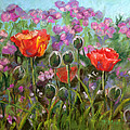 Red Poppies by Julie Maas