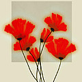 Red Poppies On Gray - Abstract Flower Art by Ann Powell