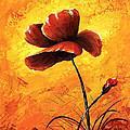 Red Poppy 012 by Voros Edit