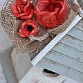 Red Poppy Inn by Amanda  Sanford