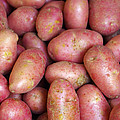 Red Potatoes by Carlos Caetano