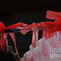 Red Ribbons by Cassandra Buckley