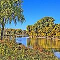 Red River Beginning Fall by Scott Grassel