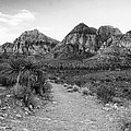 Red Rock Canyon Trailhead Black And White by Stephanie McDowell