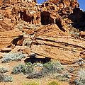 Red Rock Land by Jennifer Robin