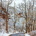 Red Rock Winter Road Portrait by James BO  Insogna