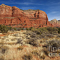 Red Rocks Of Sedona by Photography by Laura Lee