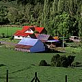Red Roofed Barn Chiloe Island by Craig Lovell