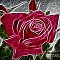 Red Rose Expressive Brushstrokes by Barbara Griffin
