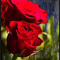 Red Rose Floral by PM Staab