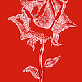 Red Rose Paintings 18 by Gordon Punt