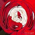 Red Rose Wrap by Mae Wertz