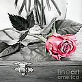 Red Rosebud by Hailey E Herrera