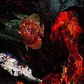 Red Ruffy by John M Perez