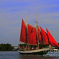 Red Sails by Kathleen Struckle