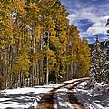 Red Sandstone Road In October by Ellen Heaverlo