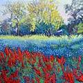 Red Season by Abid Khan